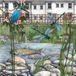 Good wildlife stream management